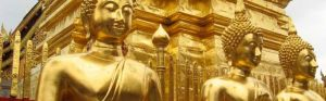 Beautiful Asia photos - thailand - golden buddhas.jpg